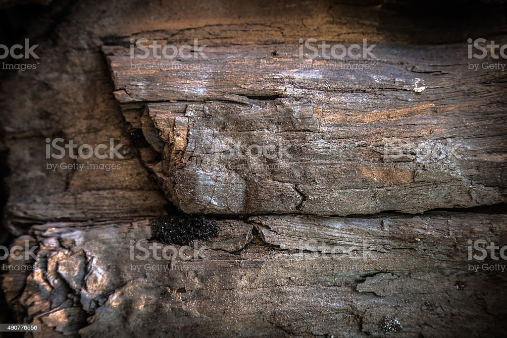 Details patterned surface texture of the black wooden coal stock photo