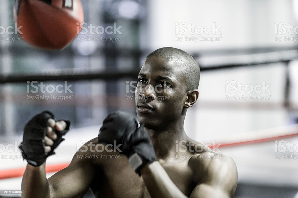 Determined boxer punching speed bag stock photo
