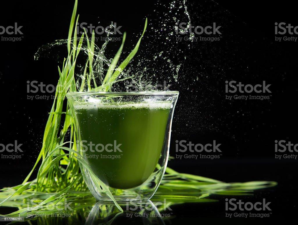 detox. young barley, chlorella superfood. stock photo