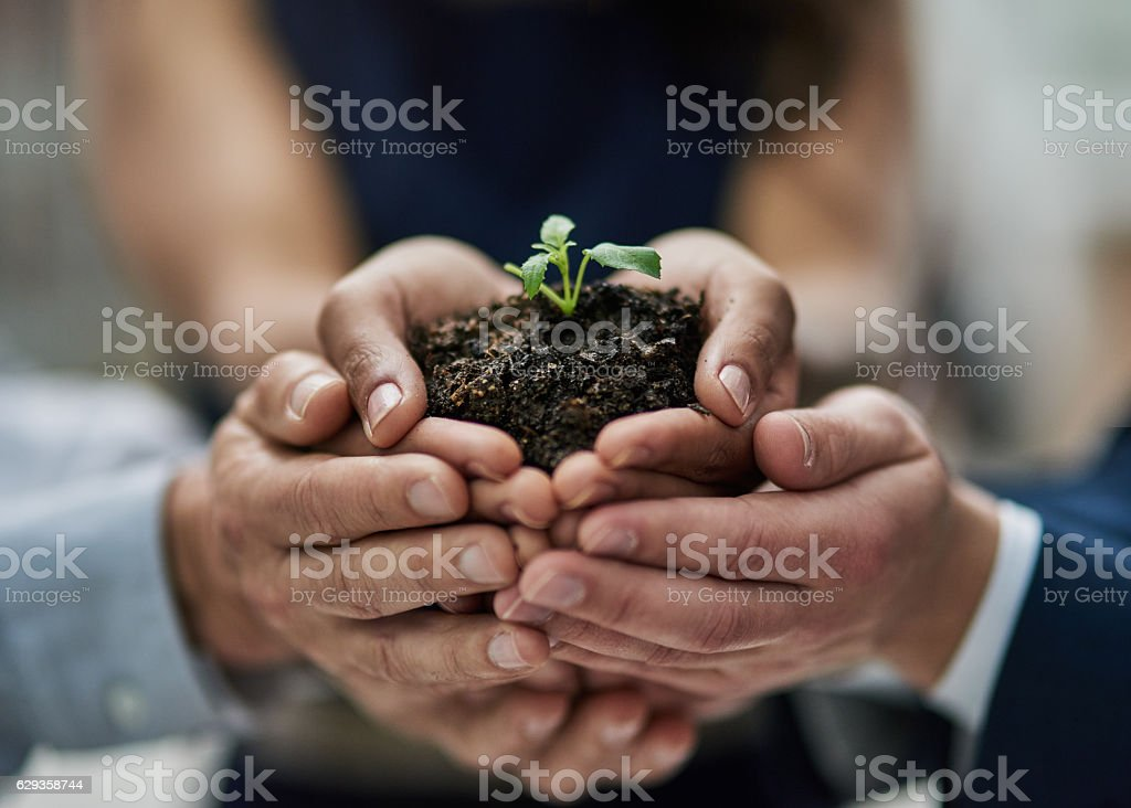 Developing a business with teamwork and determination stock photo