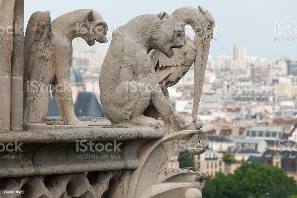 Devil, dog and Heron Gargoyles of Notre Dame stock photo