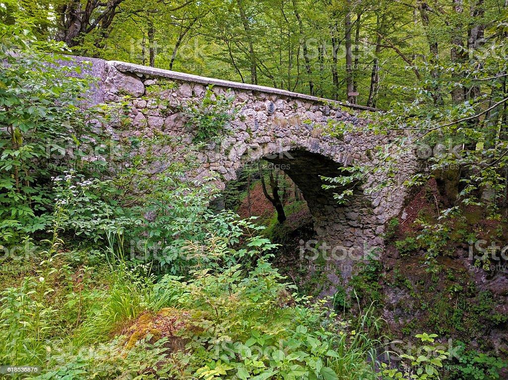 Devil's bridge over Mostnica Gorge near Bohinj, Slovenia stock photo