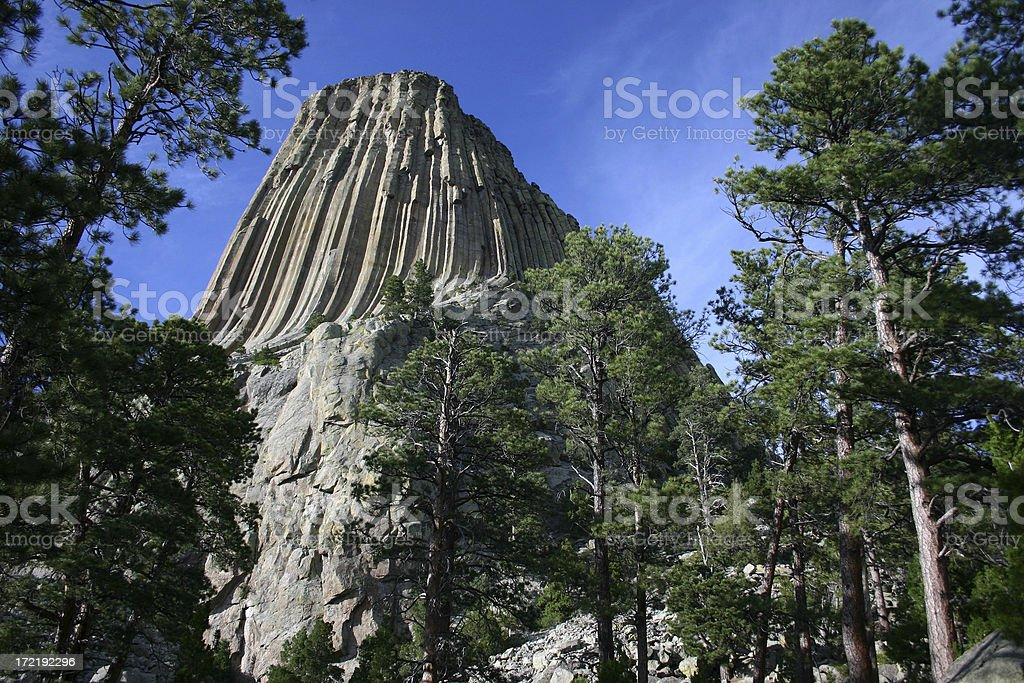 Devils Tower 2 royalty-free stock photo