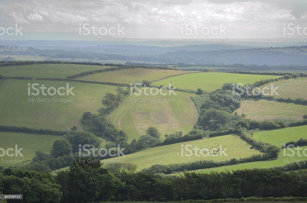 Devon Fields royalty-free stock photo
