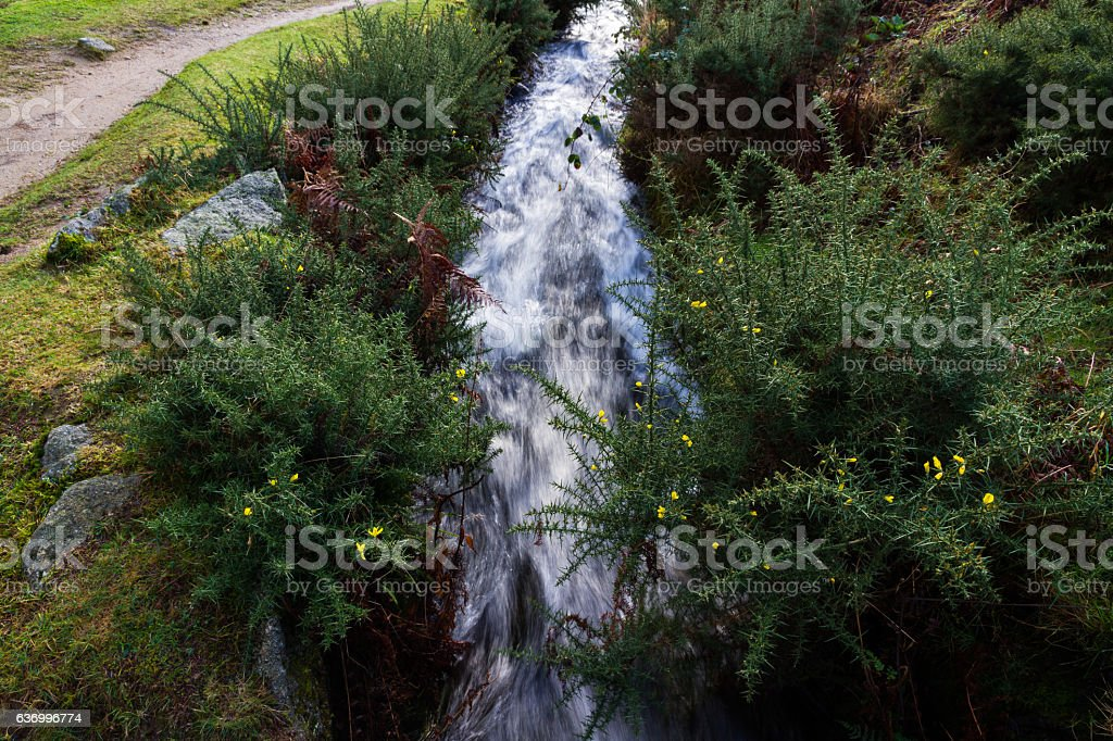 Devonport Leat, old channel carrying water, Dartmoor England. stock photo