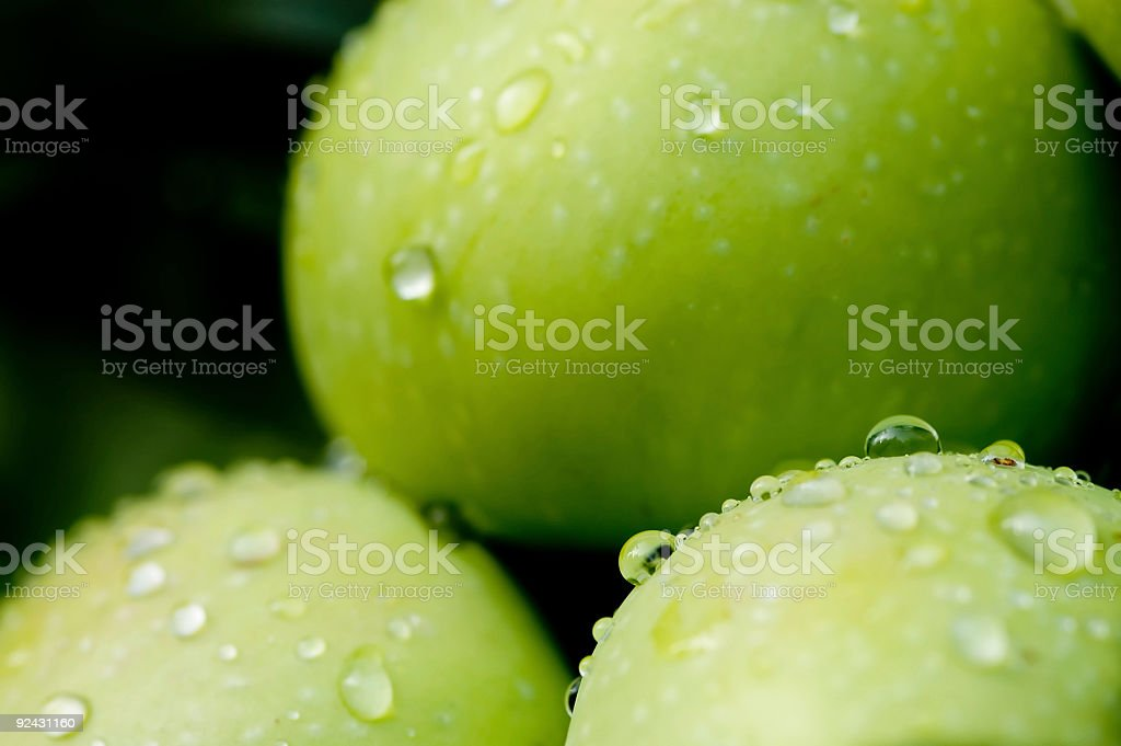 Dew Drops on Fresh Green Apples royalty-free stock photo