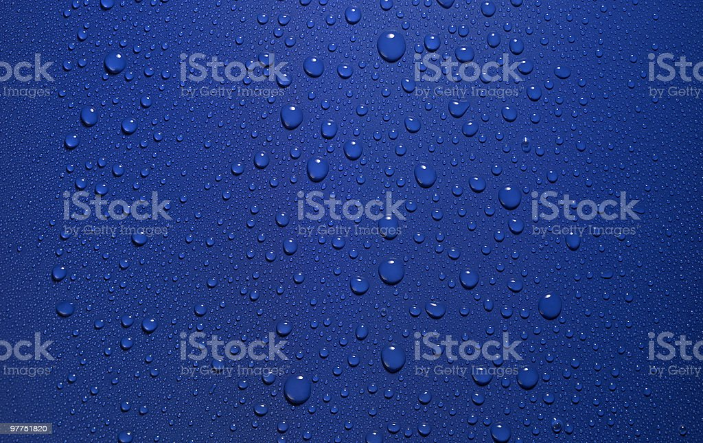 dew in blue back royalty-free stock photo