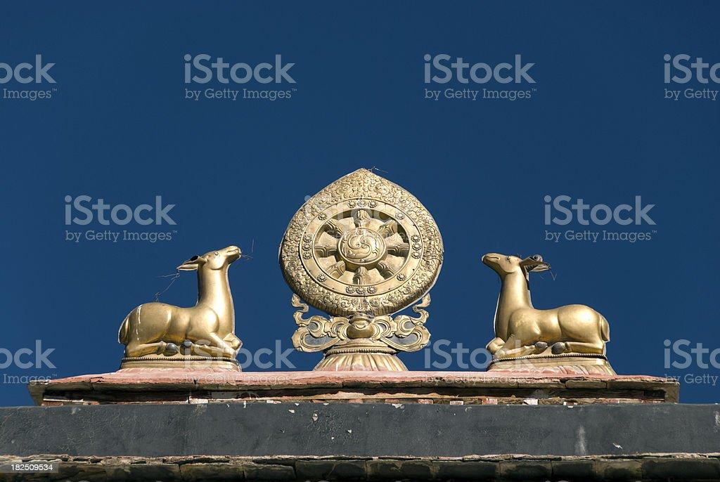Dharma stock photo