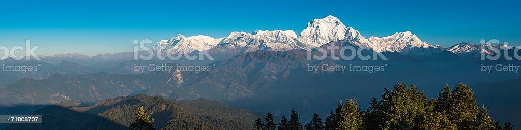 Dhaulagiri 8167m snowy mountain peak panorama sunrise Annapurna Himalayas Nepal royalty-free stock photo