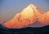 Dhaulagiri Peak Sunrise Nepal Himalayas