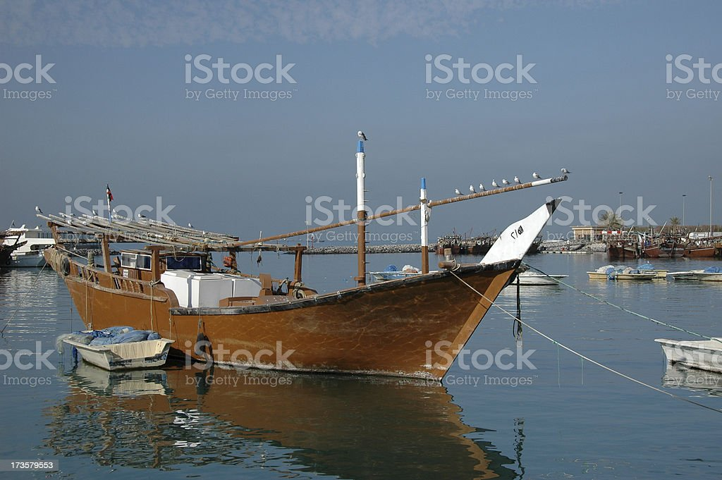 dhow with seagull in kuwait harbor stock photo
