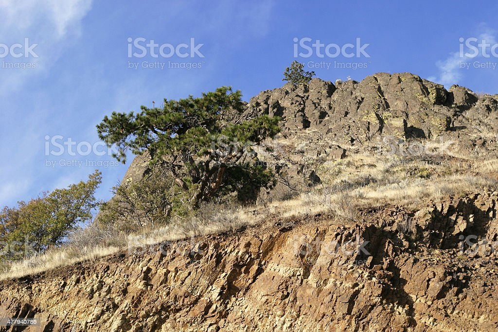 Diagonal cliff with Tree stock photo
