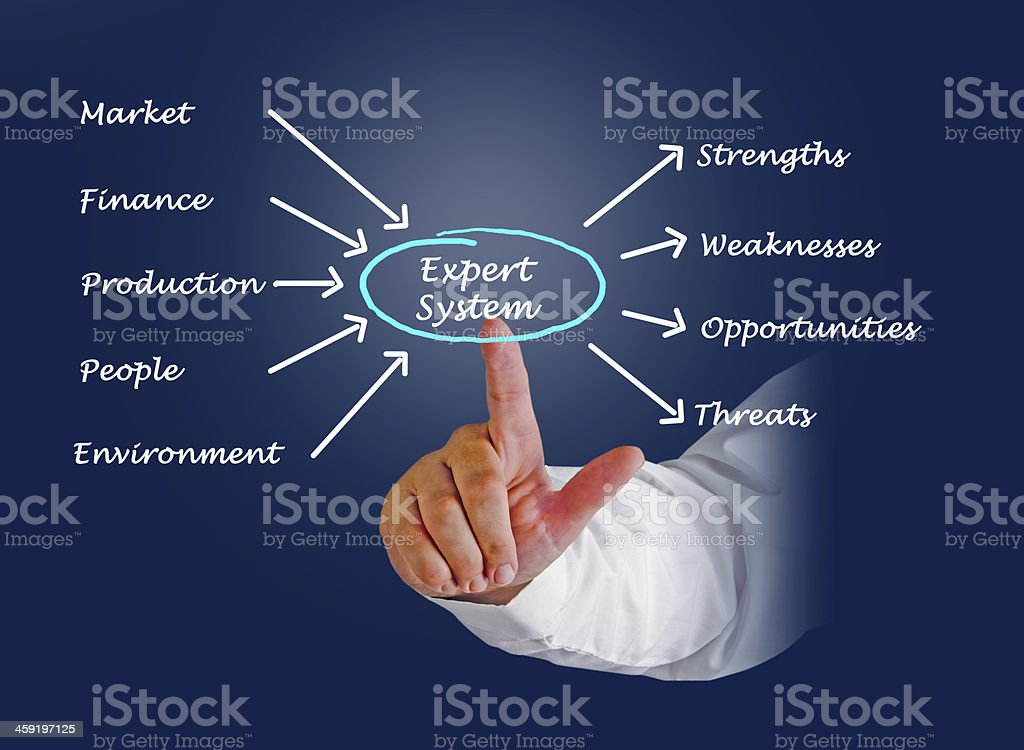 Diagram of expert system royalty-free stock photo