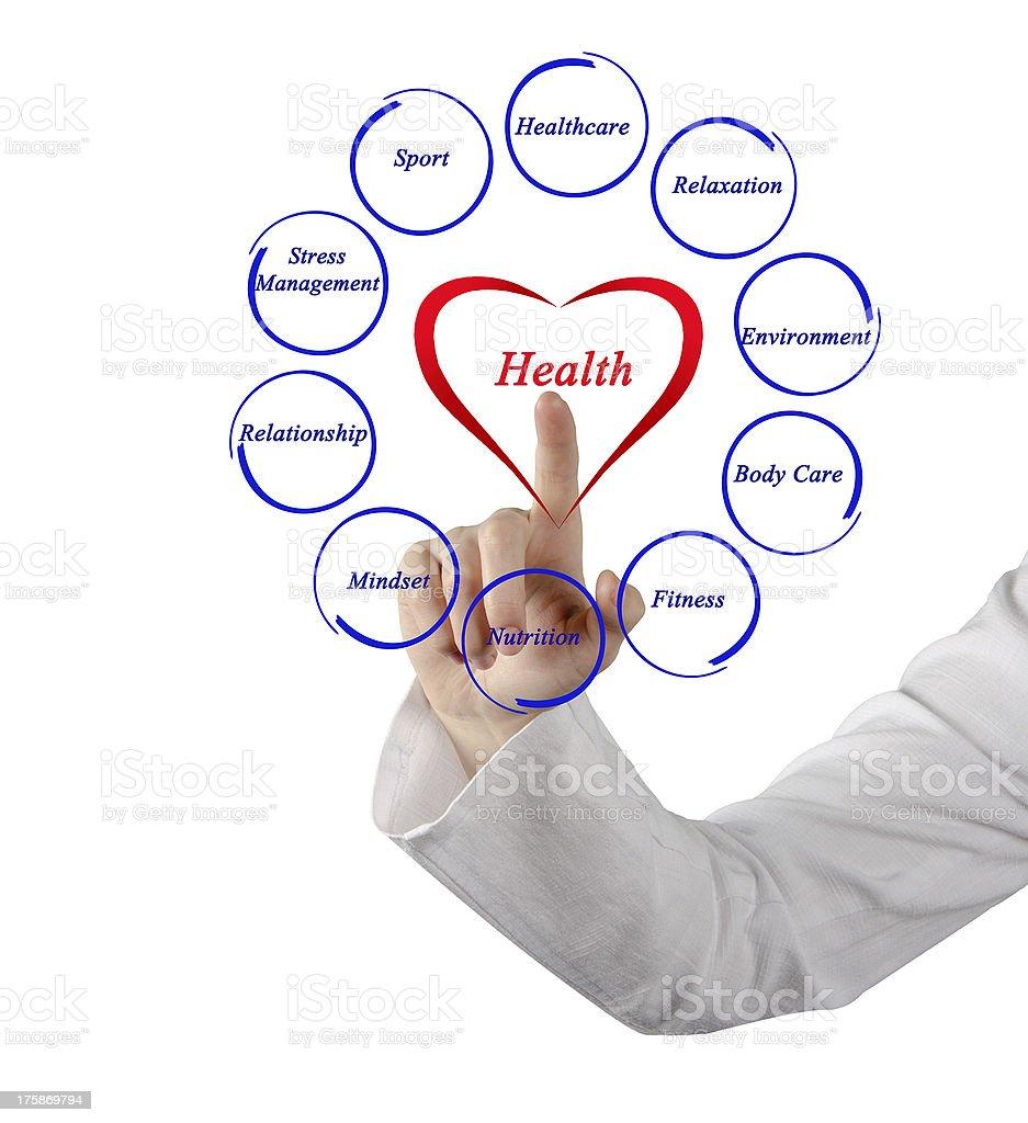 Diagram of health stock photo