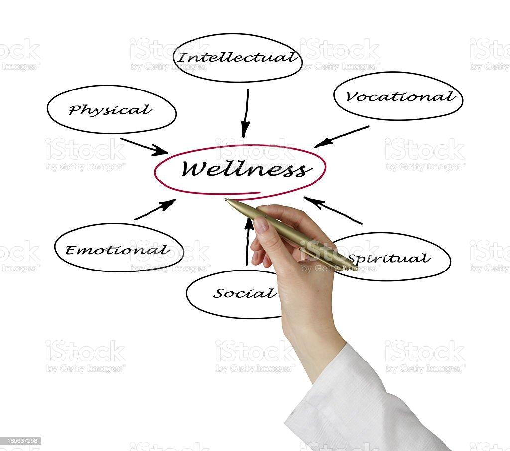 Diagram of wellness royalty-free stock photo