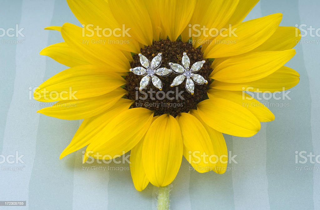 Diamond flower earrings blooming in the center of a sunflower stock photo