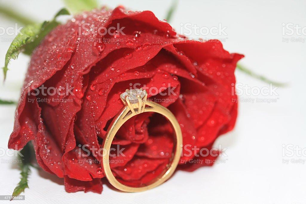 Diamond solitaire royalty-free stock photo