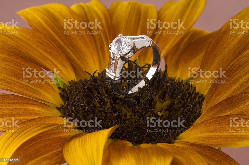 Diamond Wedding Band Set In White Gold Atop A Sunflower stock photo