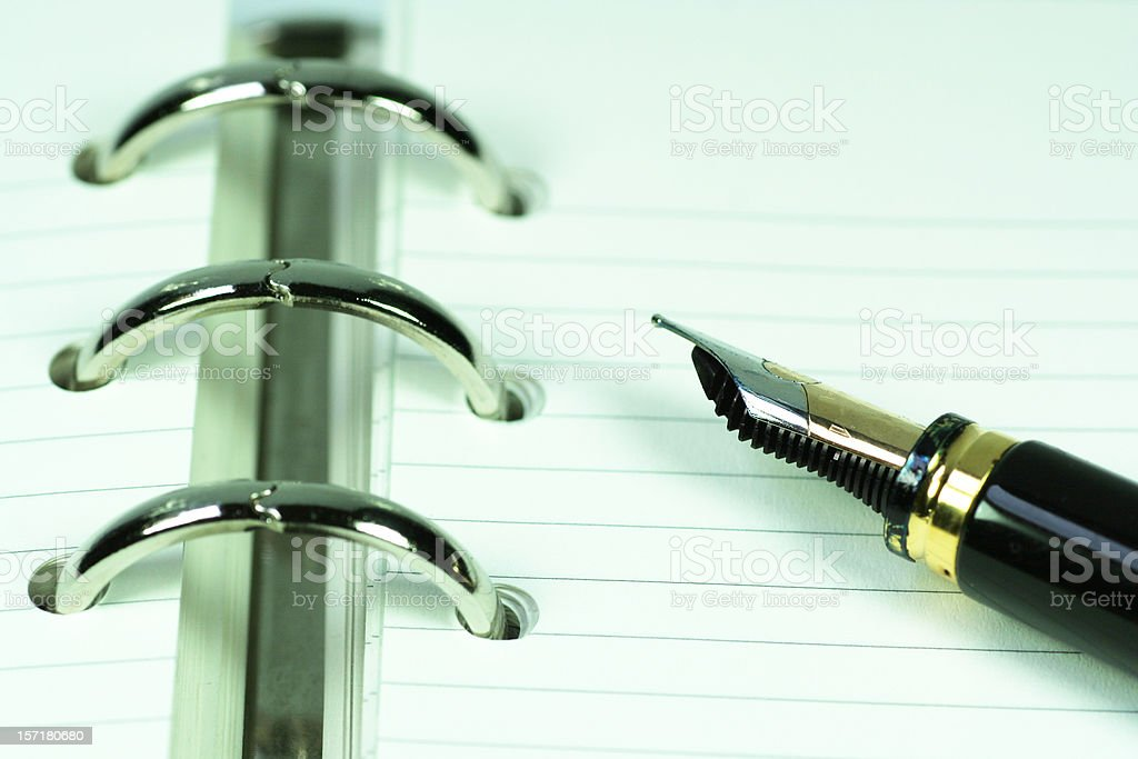 Diary and fountain pen royalty-free stock photo