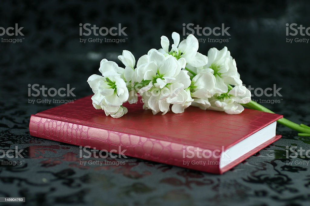 Diary of love ver2 royalty-free stock photo