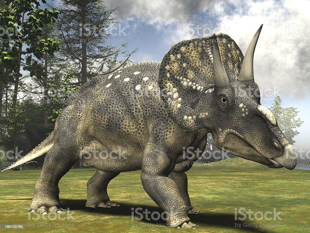 Diceratops royalty-free stock photo