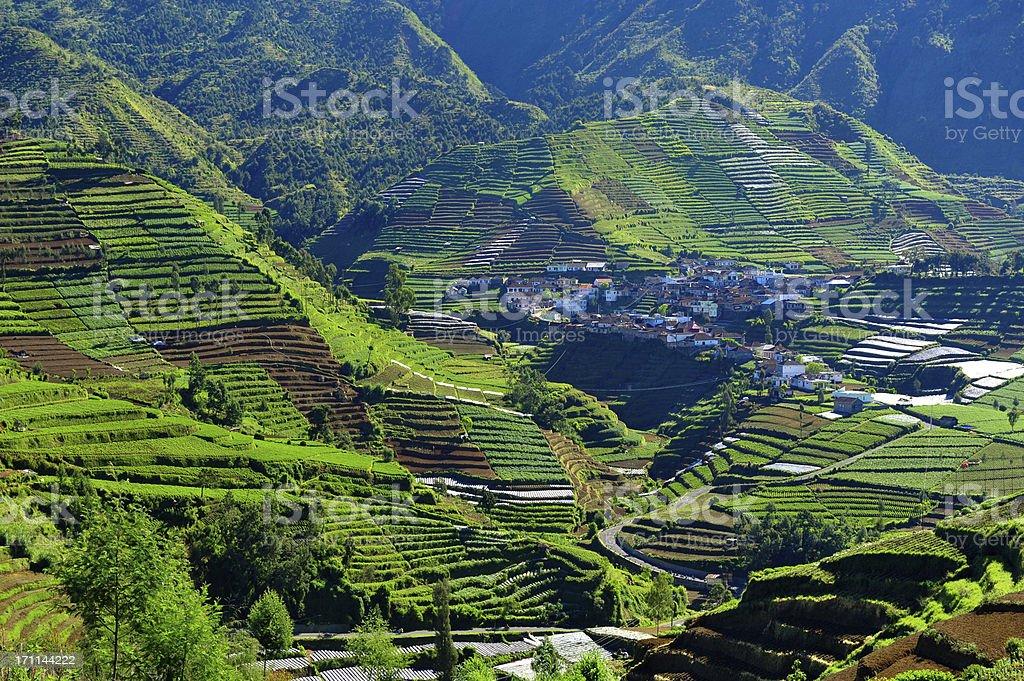 Dieng Plateau village royalty-free stock photo