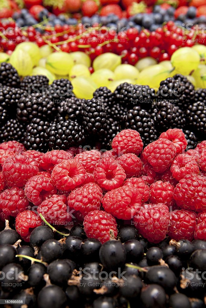 different berries vertical royalty-free stock photo