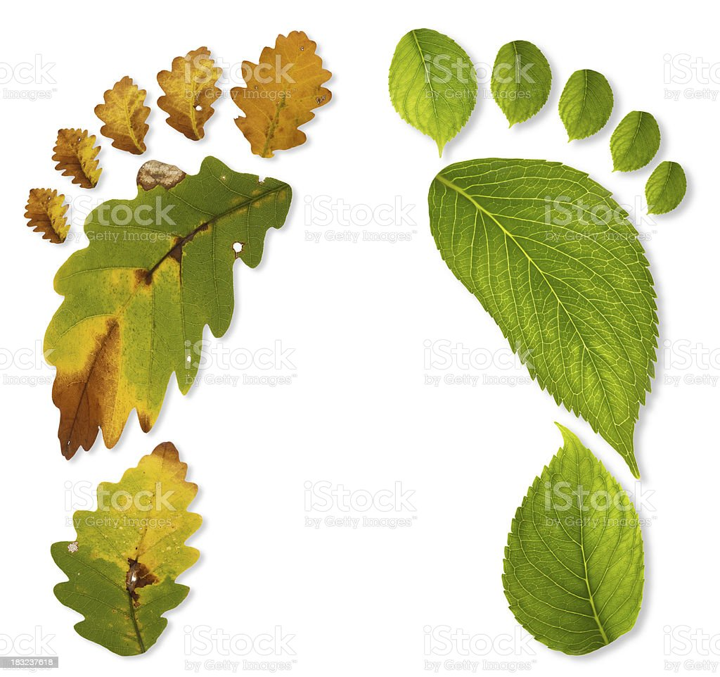 Different carbon footprints stock photo