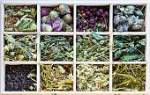 Different herbs in a wooden tea box