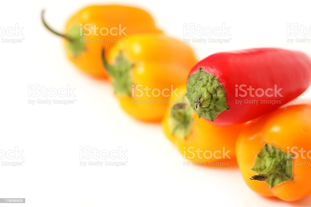 Different Jalapenos royalty-free stock photo
