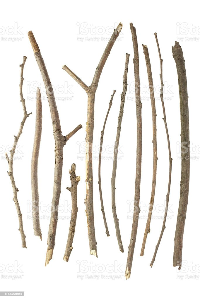 Different kinds of sticks on a white background stock photo