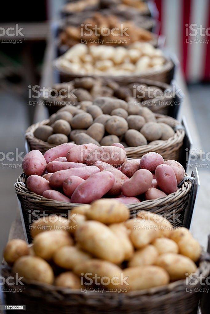 Different Potatoes stock photo