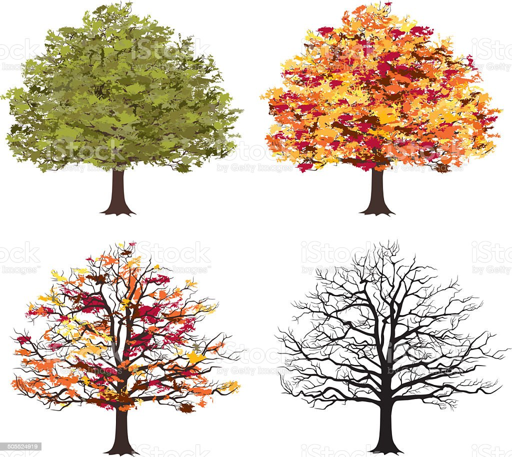 Different seasons of art tree stock photo