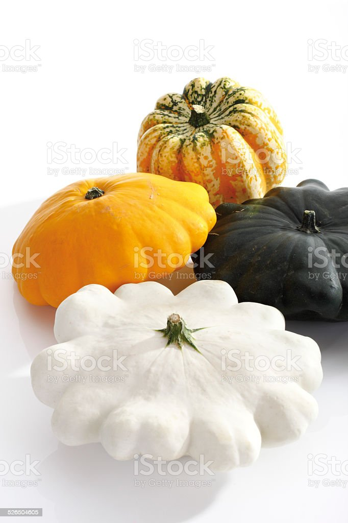 Different sorts of Squash stock photo