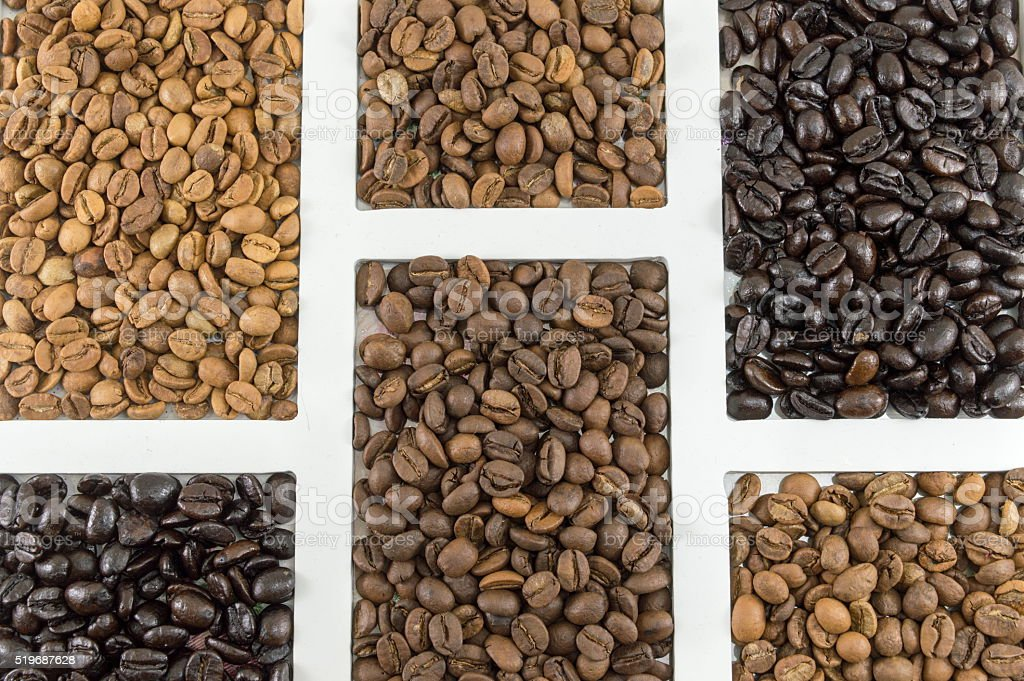 different types of coffee grains stock photo