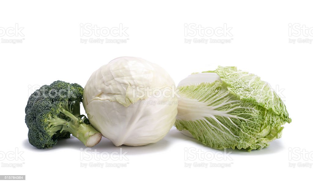 different varieties of cabbage stock photo
