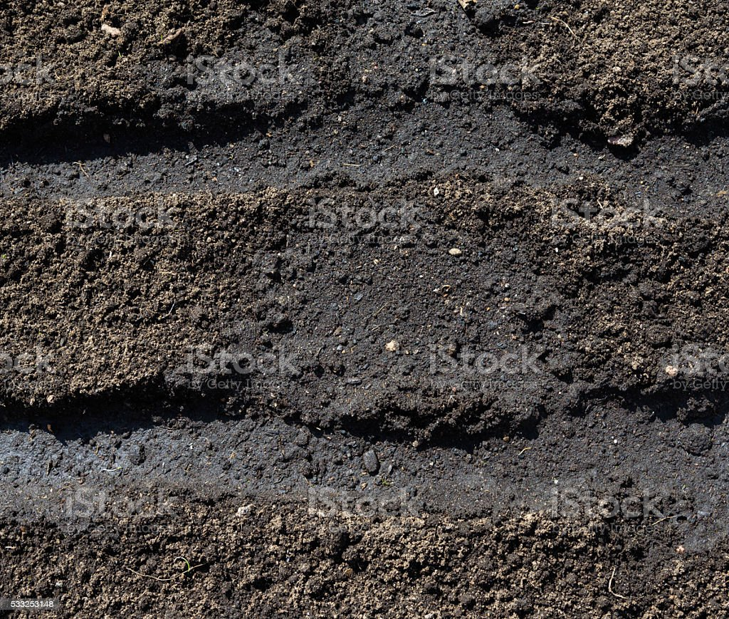 dig and loosen soil surface on  bed prepared planting seeds stock photo