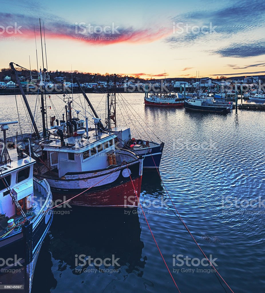 Digby Scallop Fleet stock photo