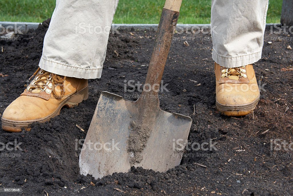Digging a Hole royalty-free stock photo