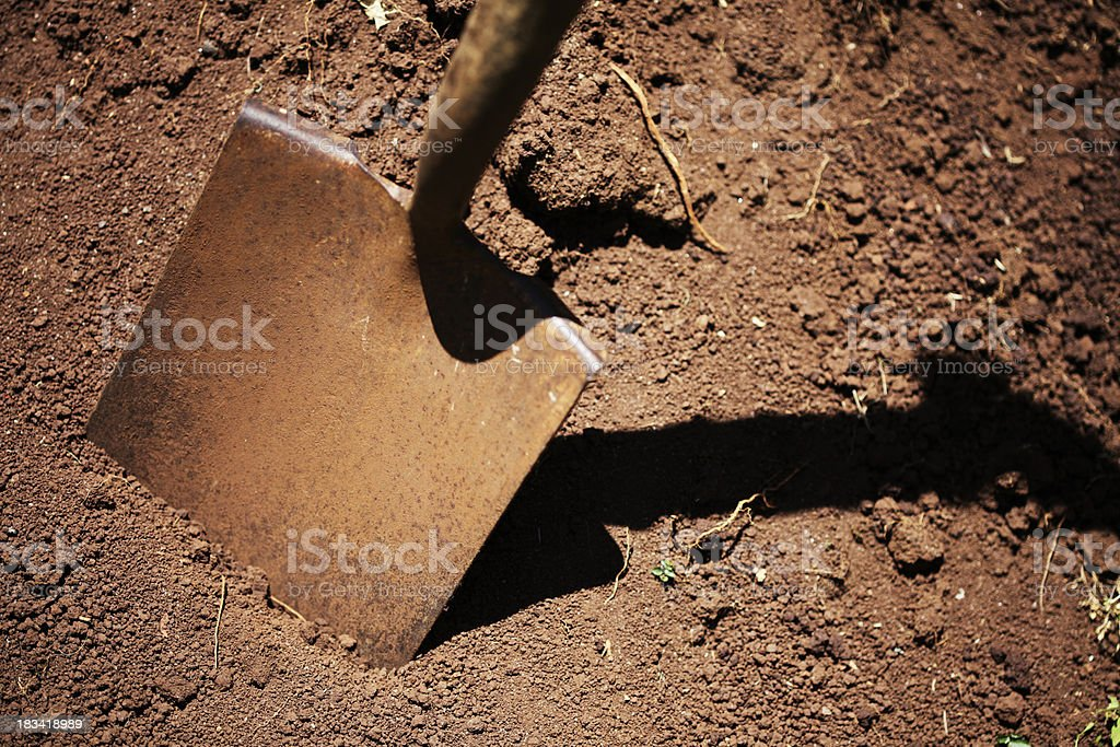Digging Dirt royalty-free stock photo