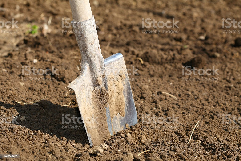 Digging Dirt - Shovel royalty-free stock photo