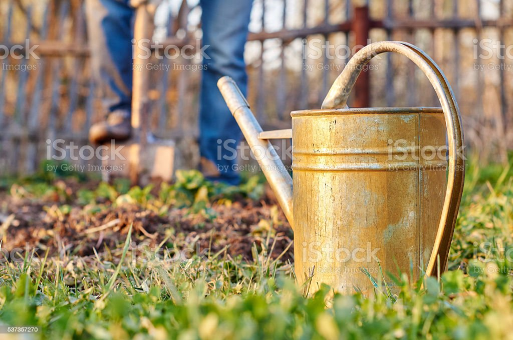 Digging garden beds stock photo