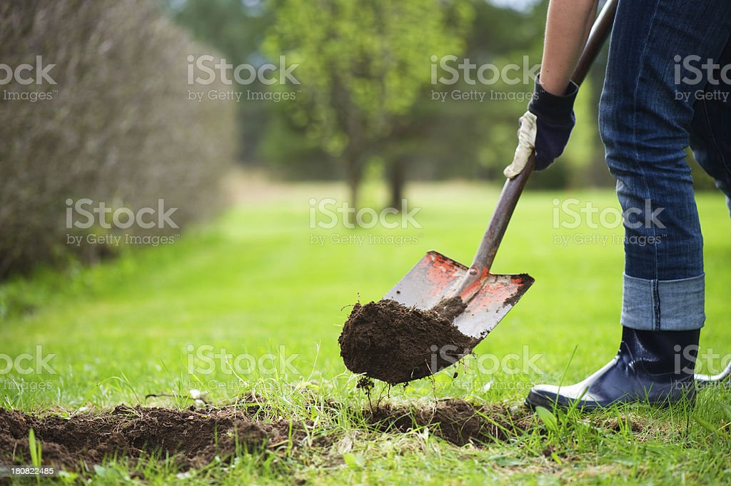 Digging hole stock photo