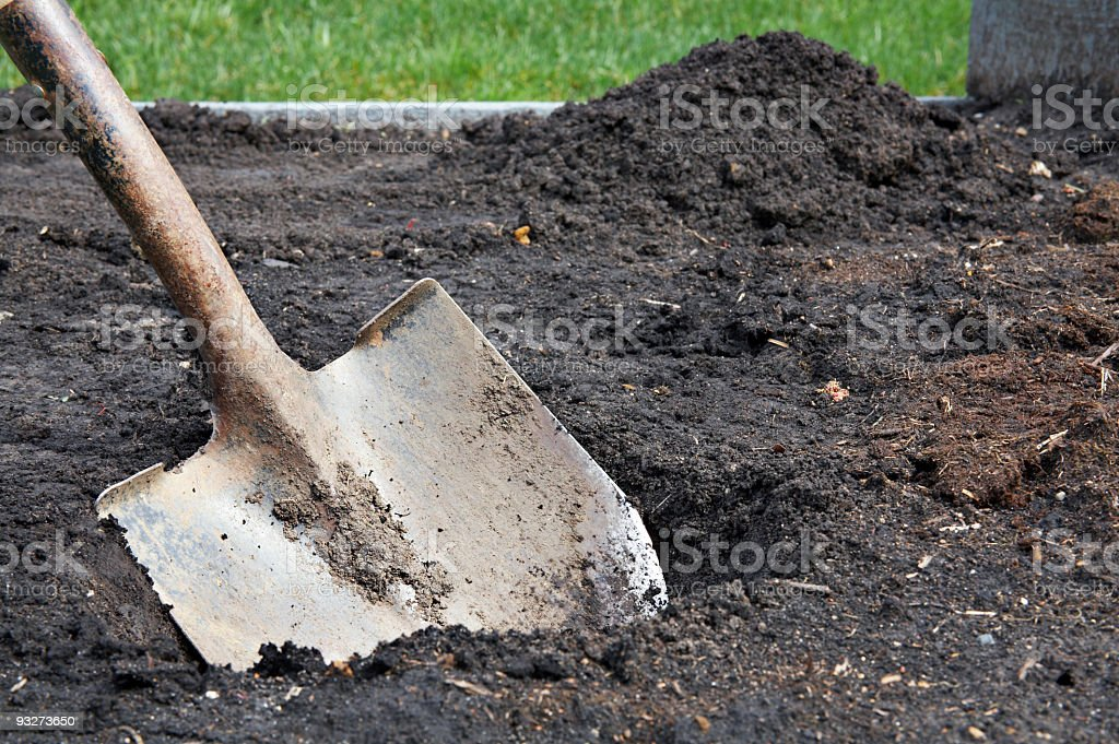 Digging in the Dirt royalty-free stock photo