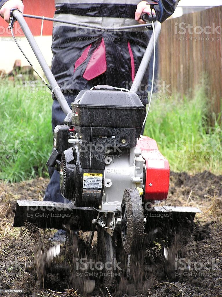 Digging In The Rain stock photo