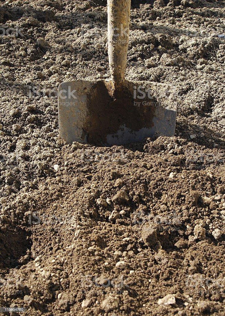 Digging soil royalty-free stock photo