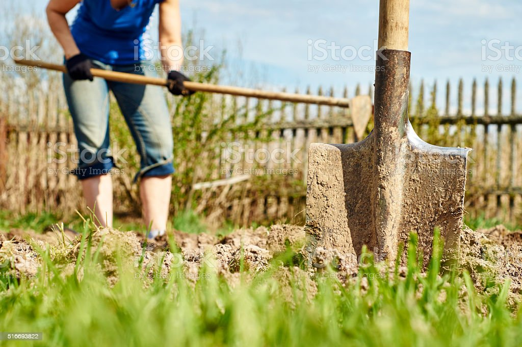 Digging the ground with a hoe stock photo