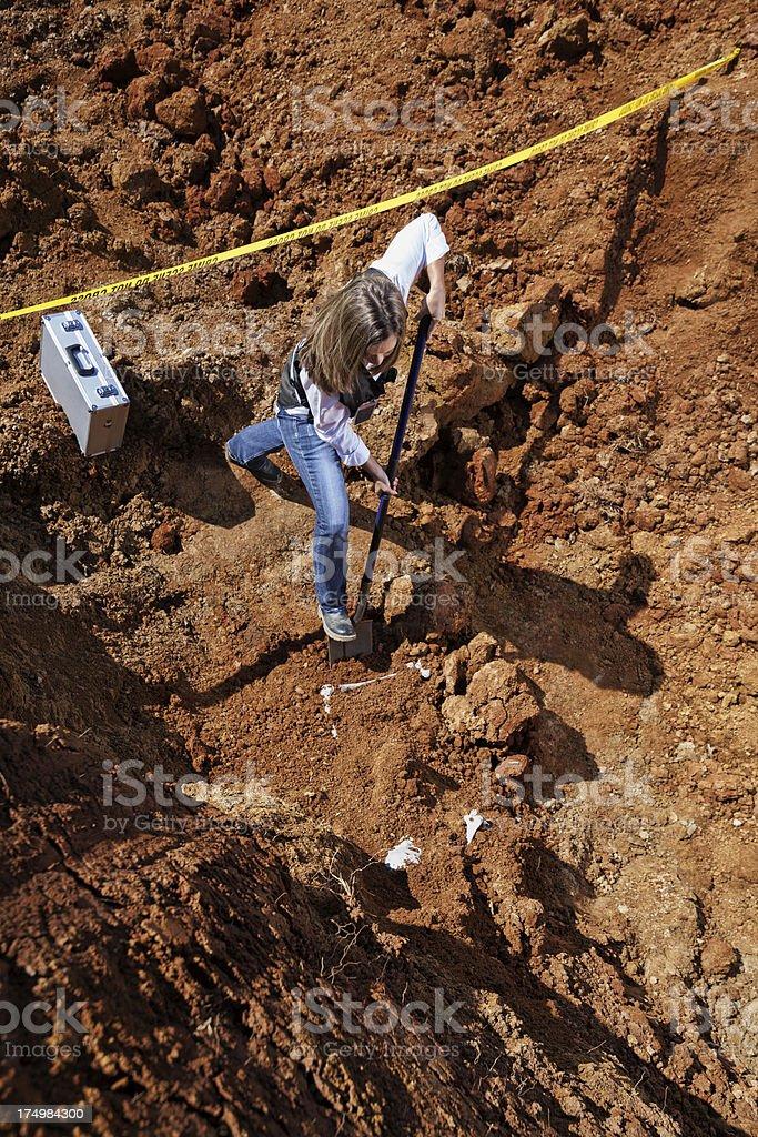 digging up bones royalty-free stock photo
