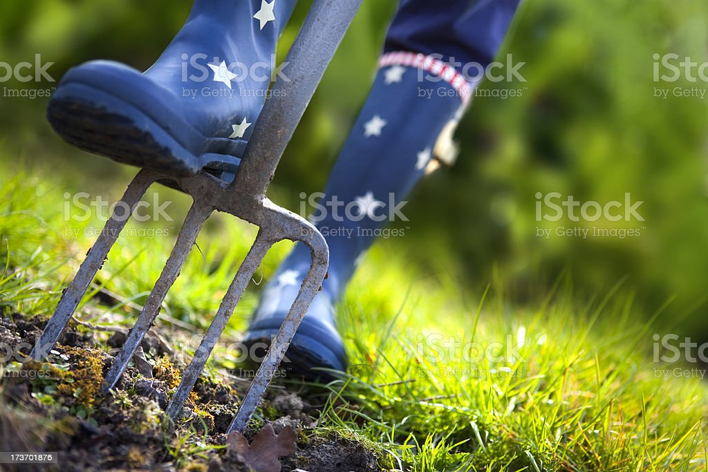Digging with Stars and Stripes Wellies royalty-free stock photo