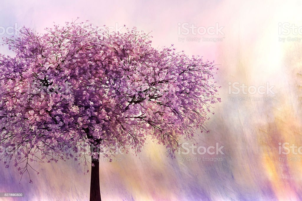 Digital art, paint textured, cherry blossom tree stock photo